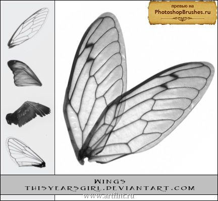 Как сделать крылья феи своими руками фото